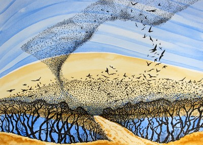 Mesmerising murmuration A3 print by Gill Williams. £65