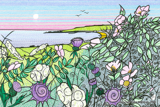 Hedgerow over Swanage Bay  by Gina Marshall