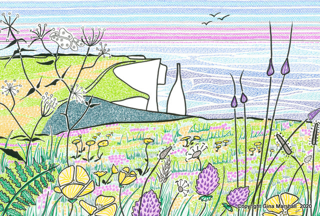 Meadow flowers on Ballard Down by Gina Marshall